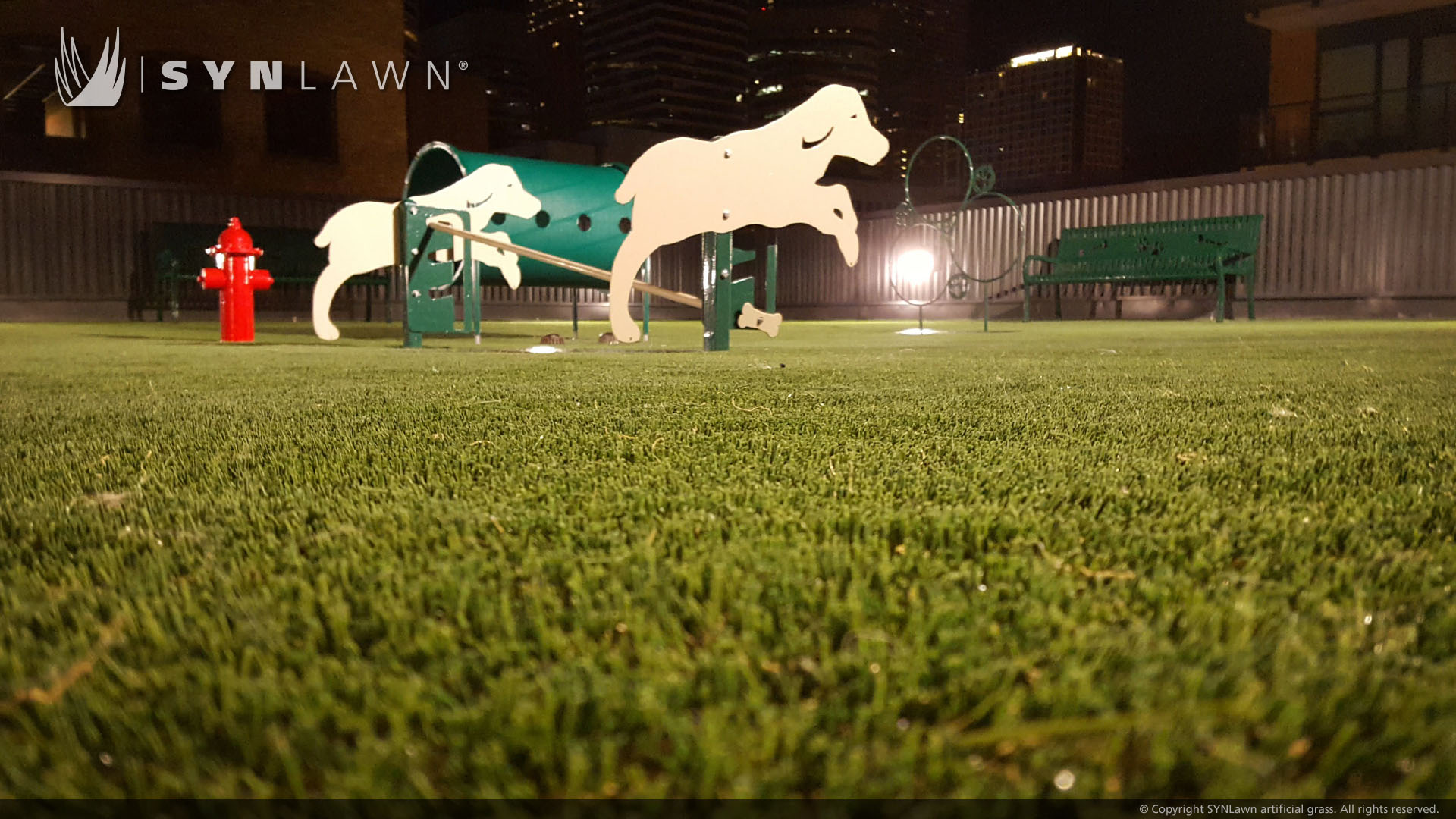 commercial artificial pet turf in Georgia