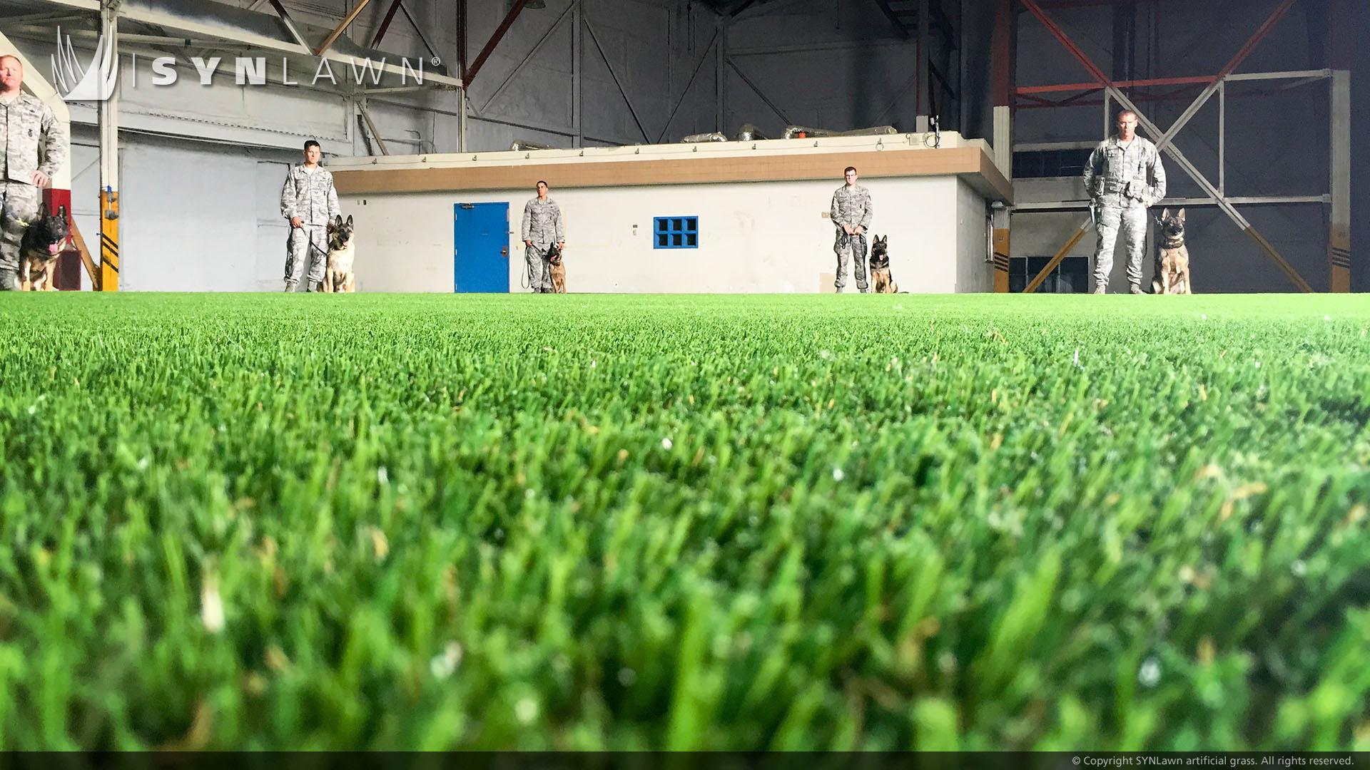 Commercial artificial grass in Georgia