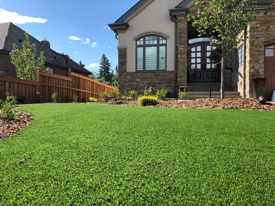 Griffin synthetic grass residential yard